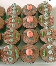Celebrate-Cakes-Allotment-cupcake