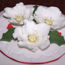 Celebrate-Cakes-Christmas-Roses