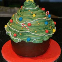 Celebrate-Cakes-Giant-Cupcake